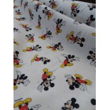 Tissu Disney - Harry Poter